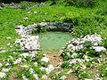 Studna na S Velebitu, vzacny zdroj vody pro dobytek.jpg
