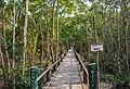 Sundarbans East Wildlife Sanctuary,Bangladesh.jpg
