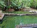 Swimming Pool (15656881556).jpg