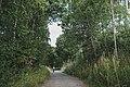 Sykkeltur etter Skreiabanen - supert 04.jpg