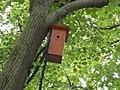 Taban Park Botanical nature trail. Nest box. - Budapest.JPG
