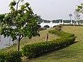 Tainan Metropolitan Park - panoramio.jpg