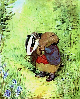 European badger - Tommy Brock, as illustrated by Beatrix Potter in The Tale of Mr. Tod