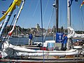 Tall Ships'Races SZCZECIN 2007 - panoramio - Czesiek11 (1).jpg
