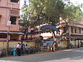 Thanamakhua Model High School - Howrah 070097.JPG