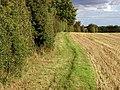 The Danthorpe to Burton Pidsea footpath - geograph.org.uk - 227766.jpg