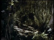 File:The Jungle Book (1942).webm