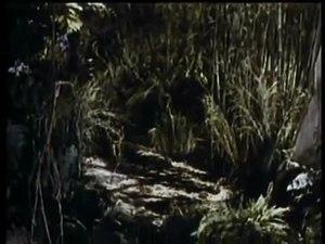 File:The Jungle Book (1942).webm