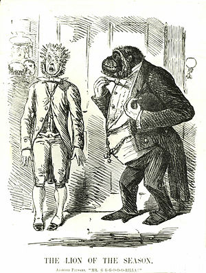 """Great Hippocampus Question - Following publication of Darwin's theory, ape ancestry became a fashionable talking point: in May 1861, an """"alarmed flunkey"""" stammers in announcing """"Mr G-G-G-O-O-O-Rilla."""