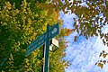 The Sakaori October avenue and autumn blue sky.JPG