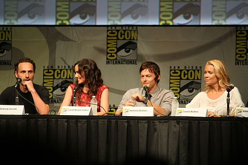 The Walking Dead - Panel (9)