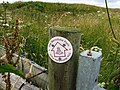 The Wansdyke Path (geograph 4589594).jpg
