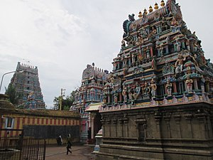 Soundararajaperumal temple, Nagapattinam - Shrines inside the temple walls