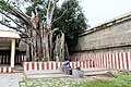 Thiruvalangadu (17).jpg
