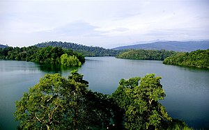 Conservation in India - Forests of Kerala. Western part of the Indian peninsula is one of the 32 ecological hotspots of the world.