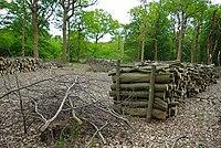 Thrift Wood Pile - geograph.org.uk - 1284294.jpg