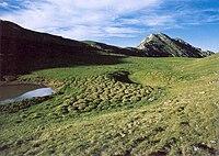 Tombea tumuli di erba e laghetto.jpg