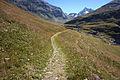 Trail to Ruisseau de la Sassière2.jpg