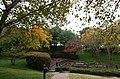 Trees Fall Water (280343137).jpg