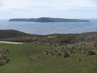 Trefoil Island island in Circular Head Council, Australia