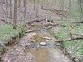 Tributary of Jordan Run (Marie J. Desonier State Nature Preserve, 2006).jpg