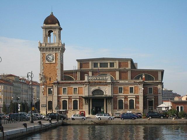 File trieste acquario wikimedia commons for Acquario marino