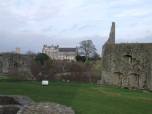 Trim Castle - Trim and Talbot Castles. Also visible are the Royal Mint, solar and Trim Cathedral