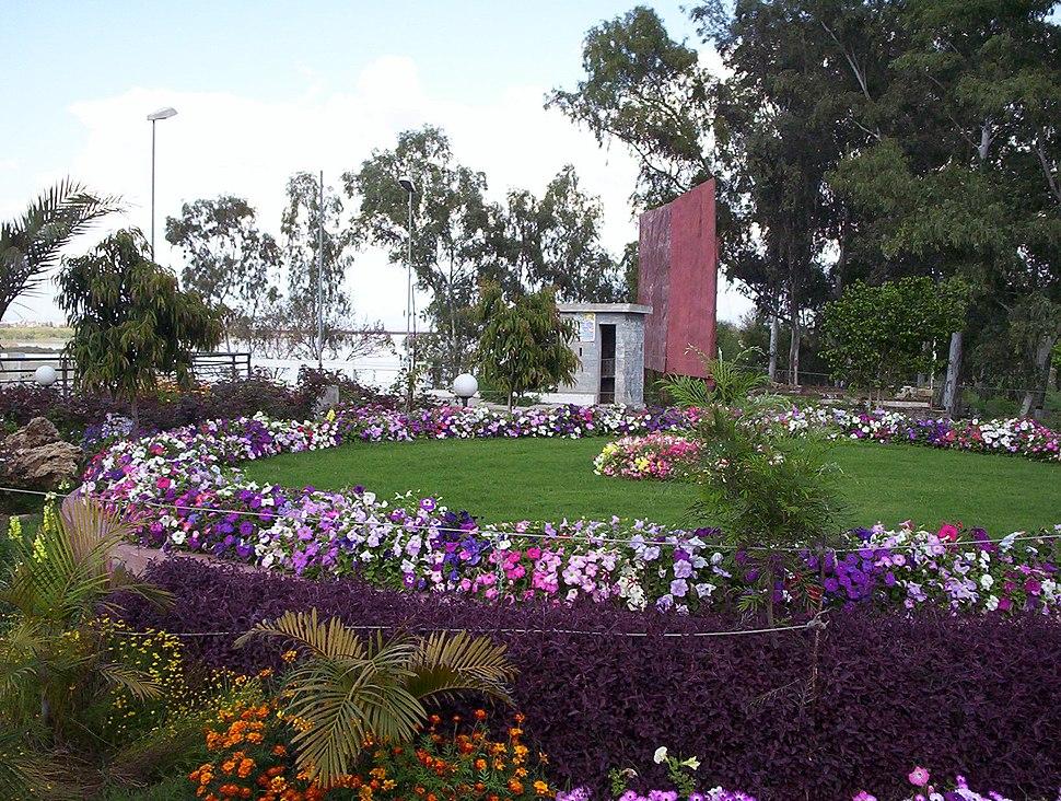 Tulip lawn Jhelum 001