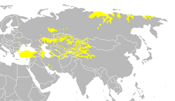 Turkic languages.png