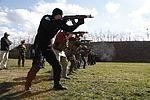 U.S. & Romanian Forces Conduct Bilateral Training 150226-M-XZ244-392.jpg