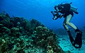 U. S. Navy Petty Officer 2nd Class Kathleen Gorby conducts underwater photography training off the coast of Guantanamo Bay, Cuba, on April 19, 2013 130419-N-IZ904-042.jpg