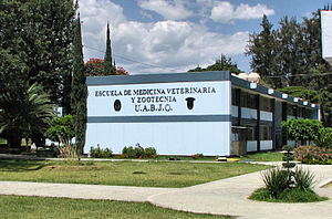 Benito Juárez Autonomous University of Oaxaca - Image: UABJO school of veterinary medicine, Oaxaca