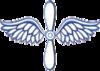 USCG Aviation Maintenance Technician rating badge