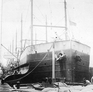 USS Beukelsdijk in port, July 1918