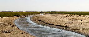 Uniek door eb en vloed steeds wisselend kweldergebied. Locatie, Noarderleech Provincie Friesland 05.jpg