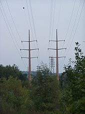 Electrical wires through a wooded area