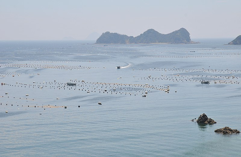 File:Uwa Sea Pearl Farm.JPG