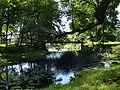 Võidula mõisa park ja Käru jõgi.JPG