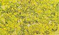 Van Gogh - Wiese mit gelben Blumen.jpeg