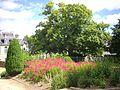 Vannes - jardin de Limur (04).jpg