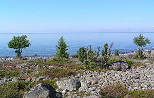 Holmöarna - The coast of Holmön island with the mainland showing as a narrow line on the horizon