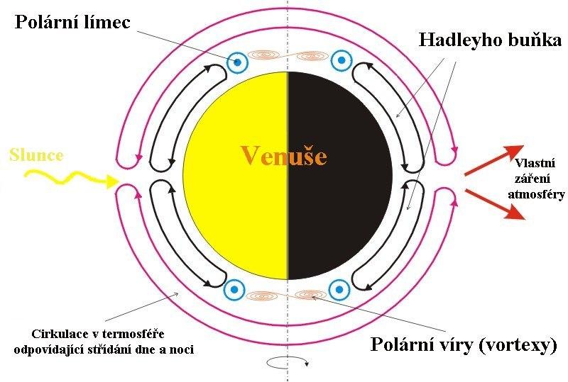 Venus circulation cs