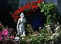Venus genitrice roseraie jd plt.jpg