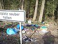 VermuellterRastplatz1.jpg