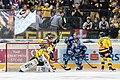Vienna Capitals vs Fehervar AV19 -67.jpg