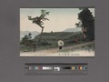 View of old, Hakone (NYPL Hades-2360098-4043897).tiff