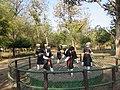 Views from Cauvery Nisargadhama (3).jpg