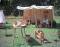 Viking reenactment at Arrowe Park 2.png