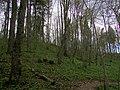 Vikmestes pilskalns, Sigulda 05.jpg