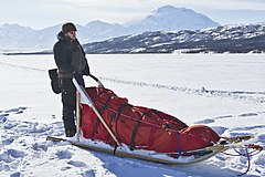 Volunteer Mushing on Wonder Lake (7065286379).jpg
